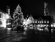 12th Dec 2017 - Mono Christmas Tree 🎄