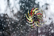 12th Dec 2017 - Whirligig in the snow storm!