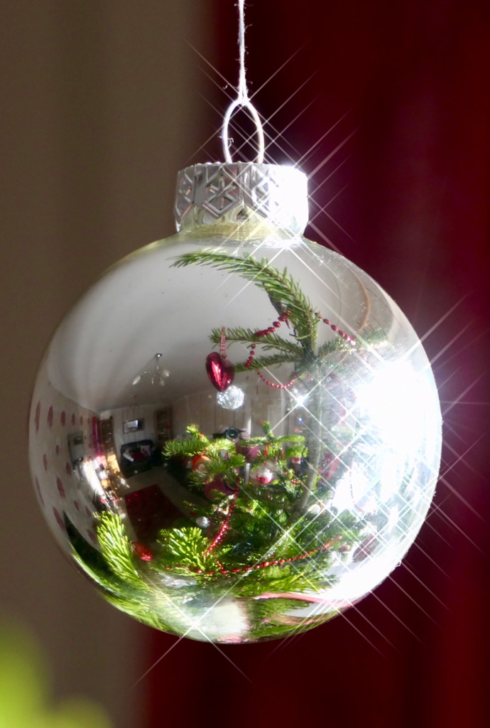 Reflective Bauble by carole_sandford