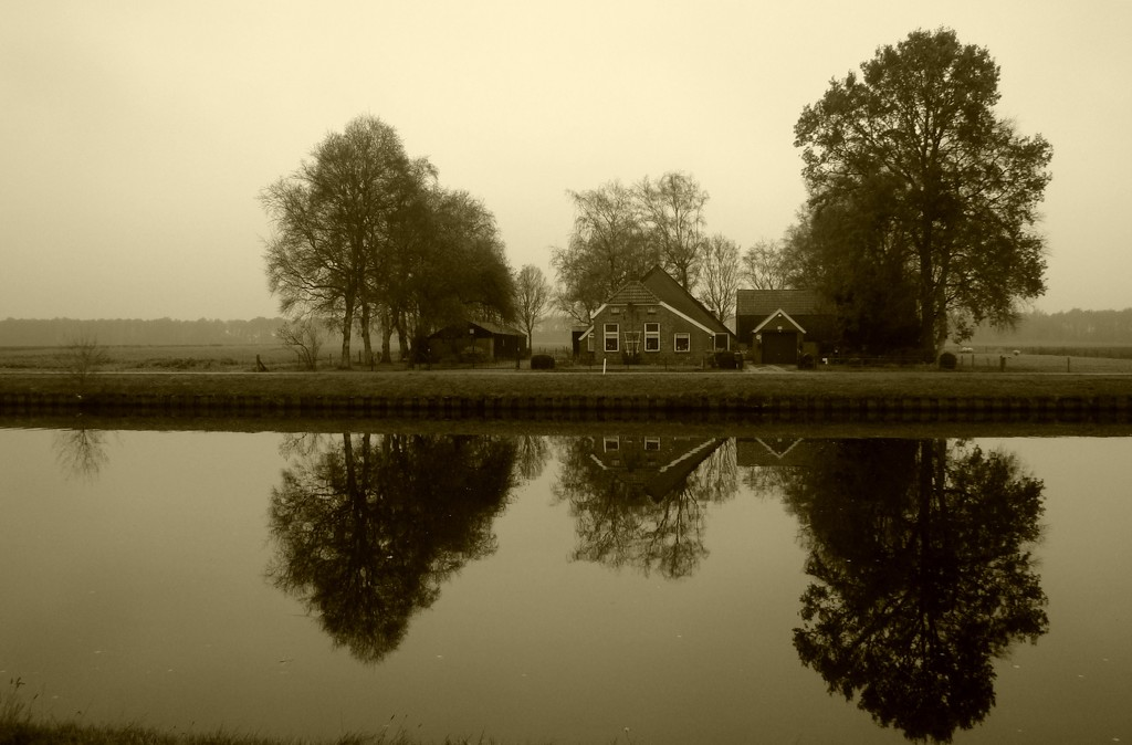 reflection in sepia by gijsje