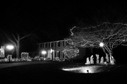 15th Dec 2017 - Holiday lights in B&W