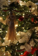 15th Dec 2017 - A Christmas angel