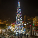 The tree at Byblos