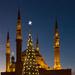 Beirut's tree