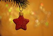 15th Dec 2017 - Shine bright little red star!