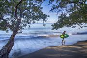 15th Dec 2017 - Surfs Up ...