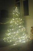 15th Dec 2017 - Oh Christmas Tree