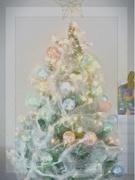 16th Dec 2017 - Oooh , Christmas Tree !!