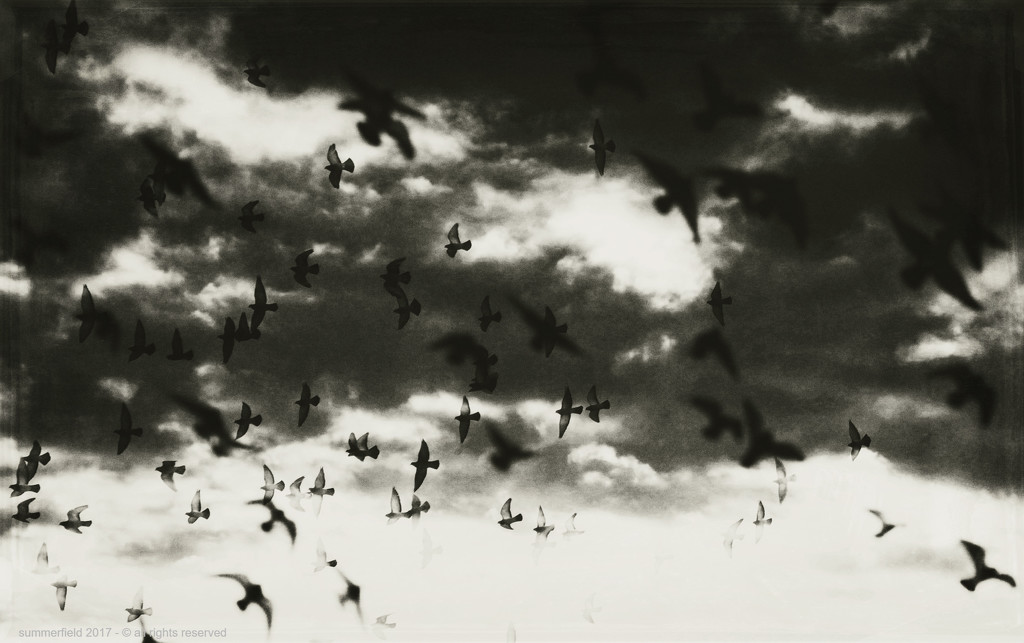 in the style of mario giacomelli's luna vedova by summerfield