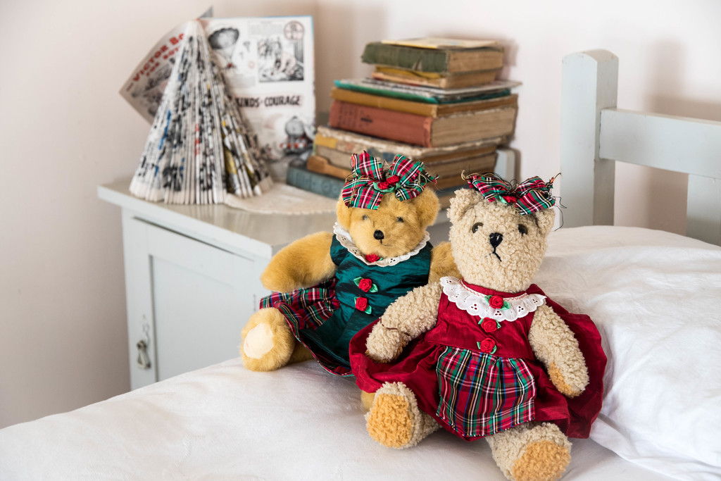 Two Bears by yorkshirekiwi