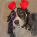 The Reluctant Reindeer