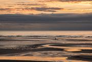 16th Dec 2017 - Stranger on the shore