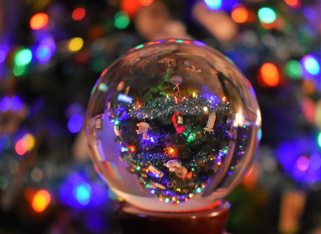 Christmas reflections by caitnessa