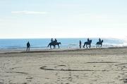 18th Dec 2017 - Horseback riding on the shoreline