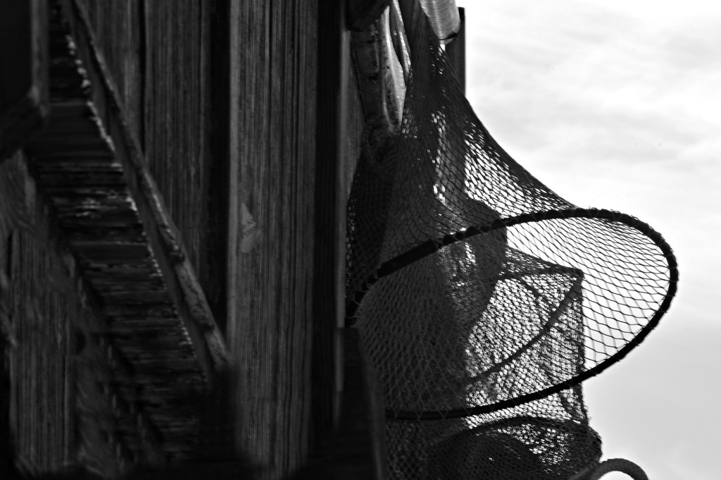 fishing nets by caterina