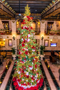 18th Dec 2017 - Davenport Hotel Christmas Tree