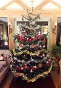 18th Dec 2017 - Our Christmas Tree