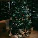 O, Christmas Tree! O, Christmas Tree!