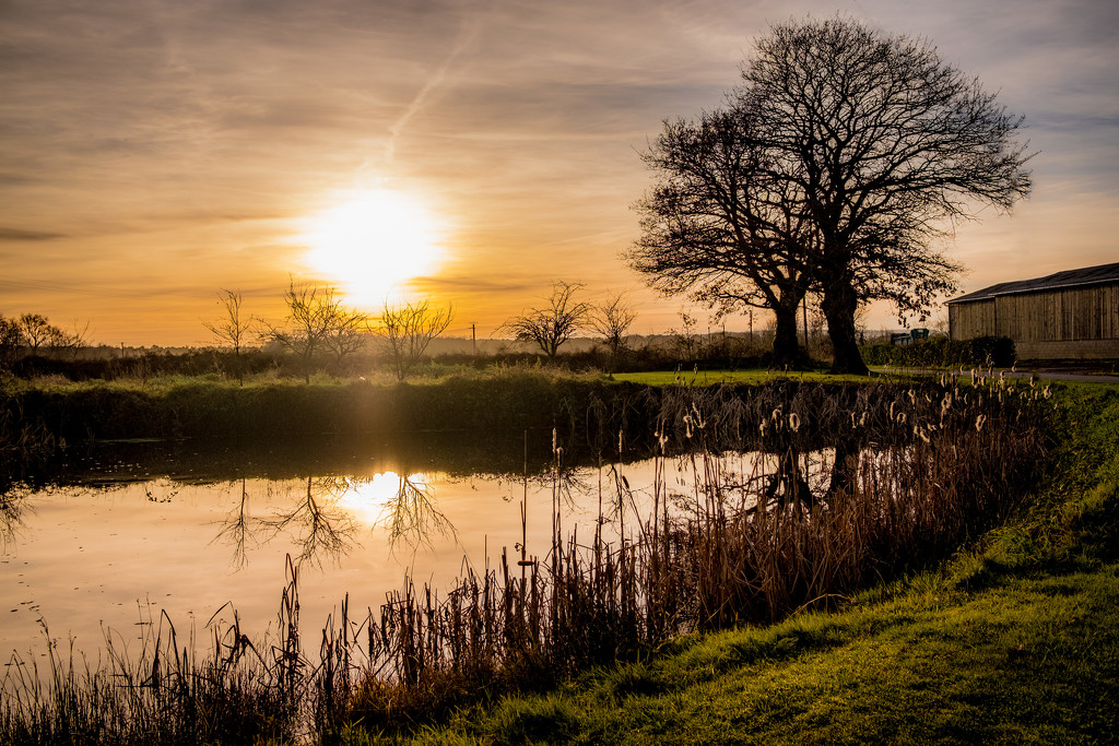 On Golden Pond... by vignouse