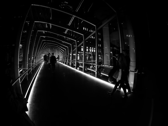 the bridge (redux) by northy