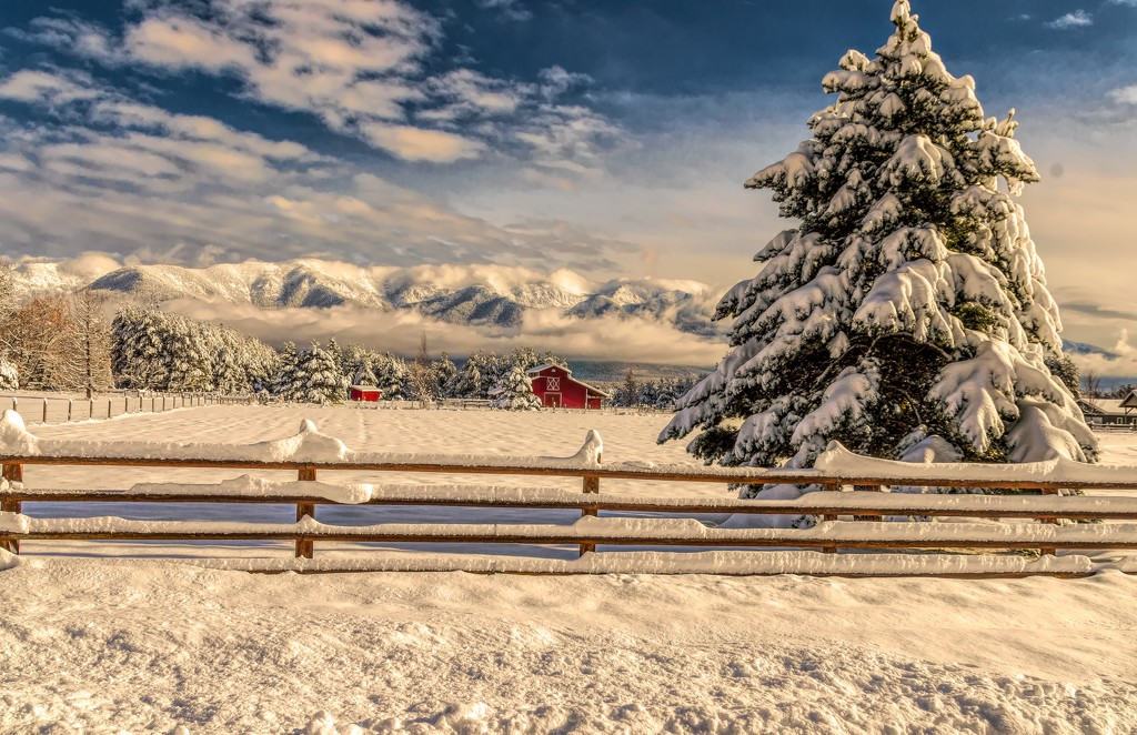 Winter in Montana by 365karly1