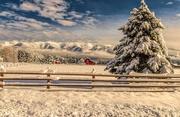 21st Dec 2017 - Winter in Montana