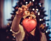 21st Dec 2017 - Holiday Love