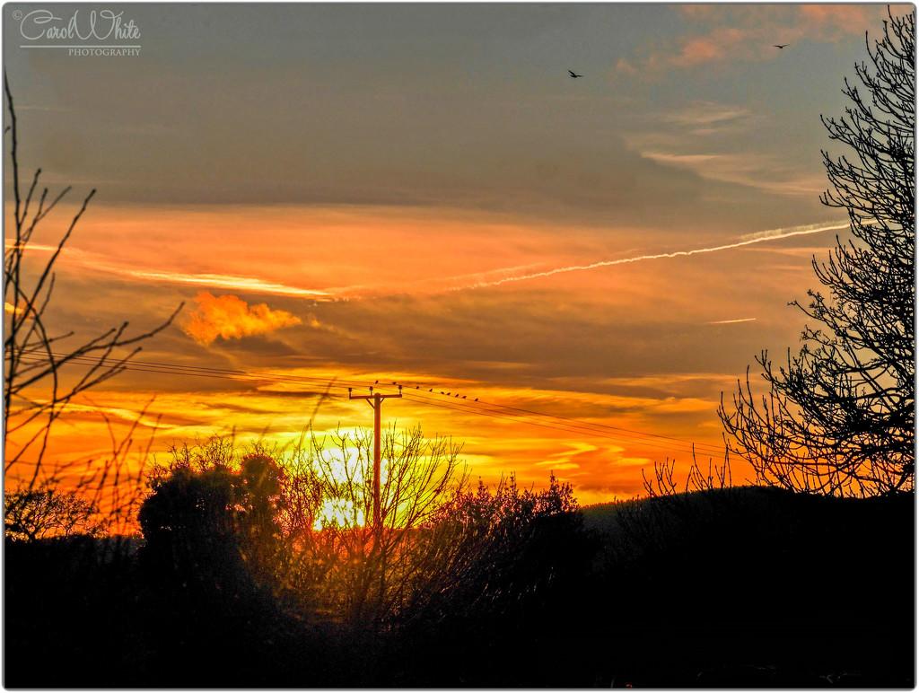 Shropshire Sunrise by carolmw