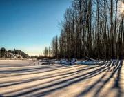 24th Dec 2017 - Low Winter Sun Shadows