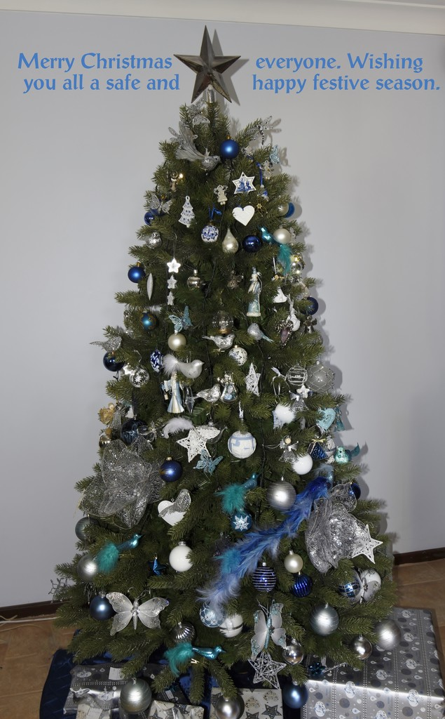 Merry Christmas Everyone_DSC0741 by merrelyn