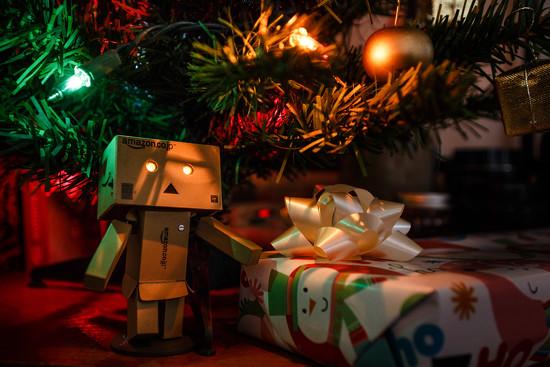 Danbo Christmas by batfish