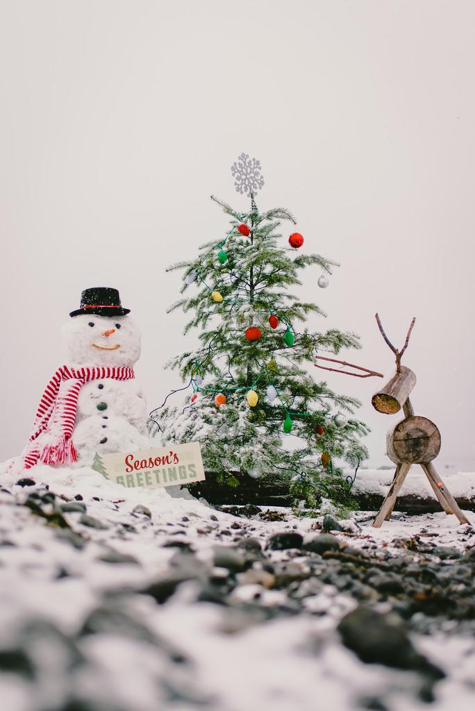 Season's Greetings by kwind