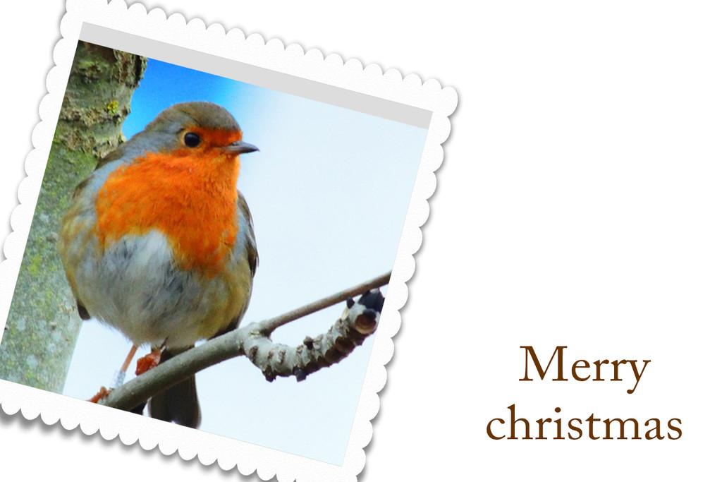 Merry Christmas by rosiekind