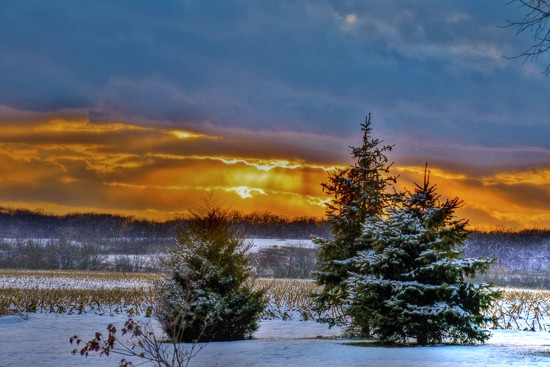 Christmas Eve Sunset by lynnz