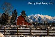 25th Dec 2017 -  Happy Holidays!