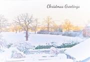 25th Dec 2017 - In the bleak mid winter ----