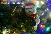 25th Dec 2017 - Merry Christmas!