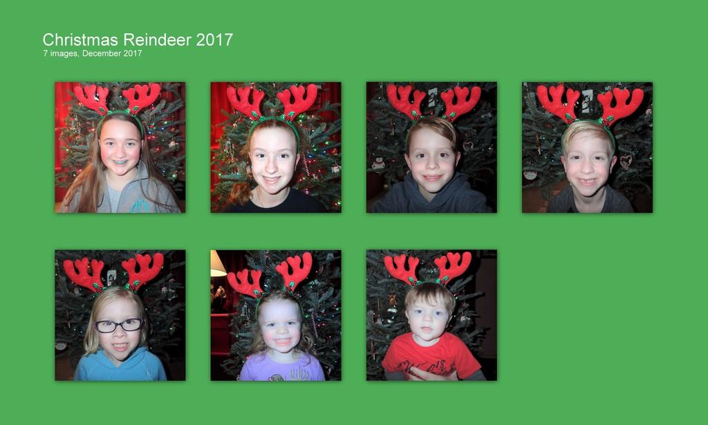 Christmas Reindeer 2017 by cjwhite