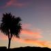Sunset on Christmas by salza