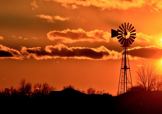 Windmill by lynnz