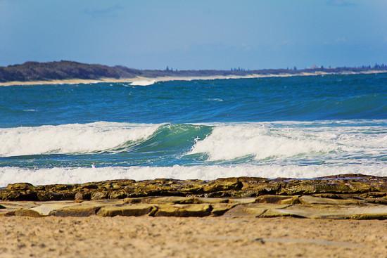 Wave by corymbia