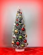 28th Dec 2017 - Little tree