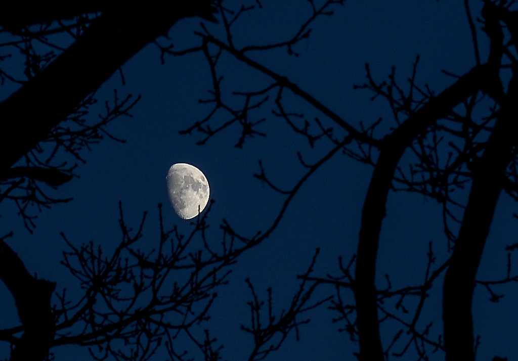 moon by ilovelenses