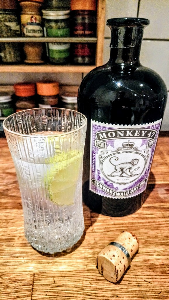 Monkey 47 and tonic by boxplayer