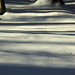 2918-1228 Shadows in the Snow