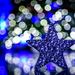 Holiday Bokeh by kwind