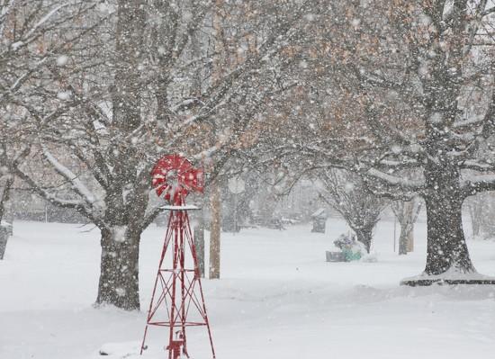 Snowy Day In The Neighborhood by lynnz