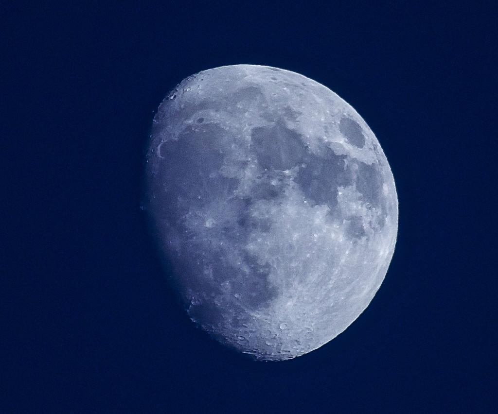 Afternoon Moon by tonygig