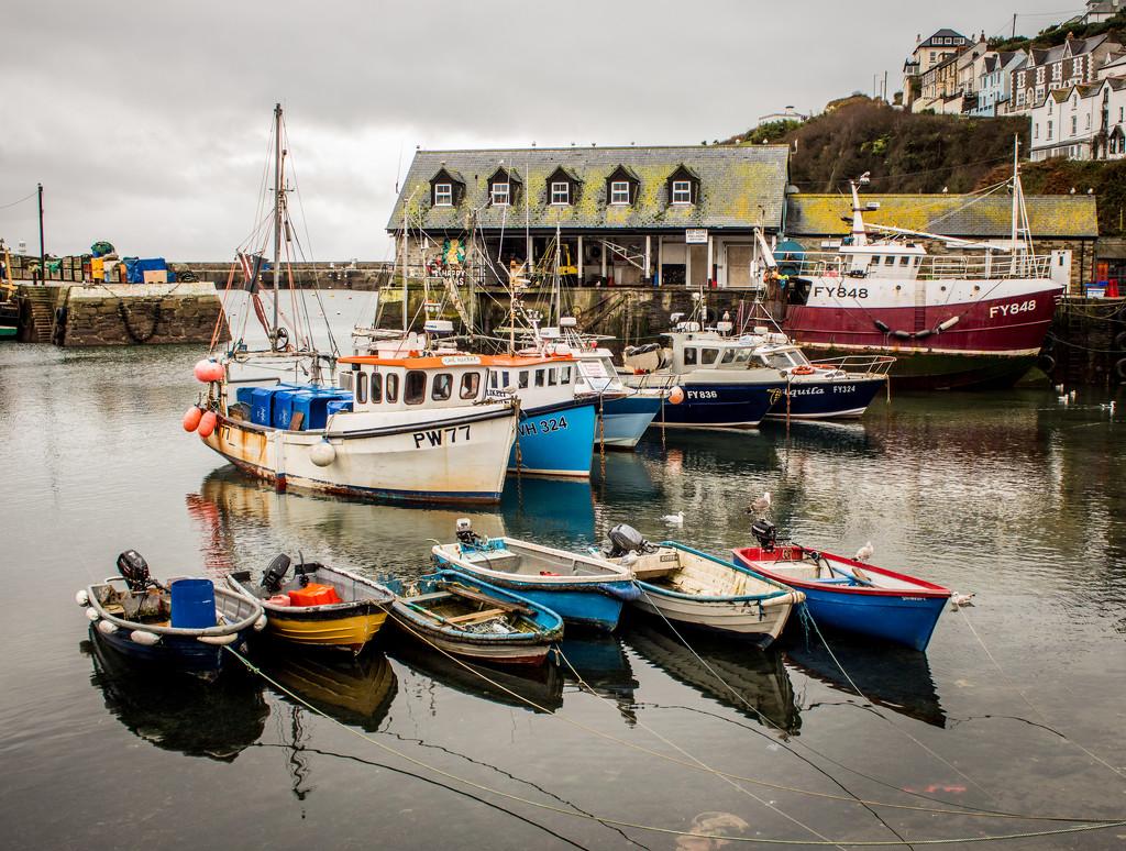 Fishing boats by swillinbillyflynn