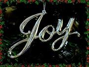 25th Dec 2017 - Christmas Joy.